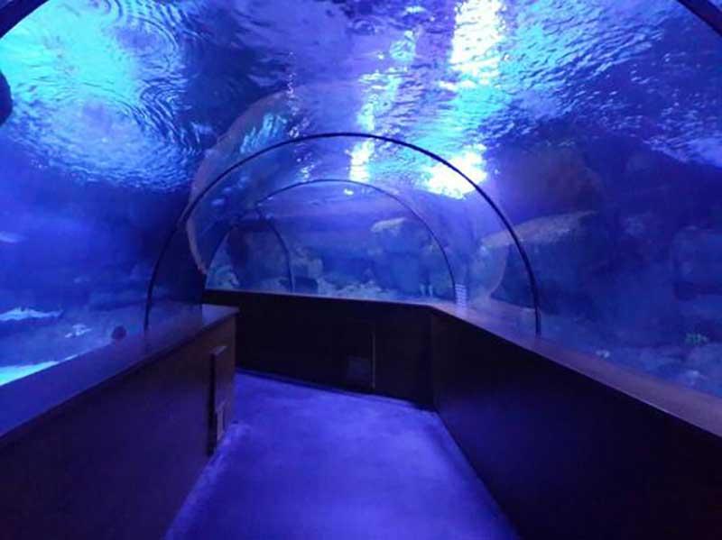 Aqua Vega Aquarium, Ankara
