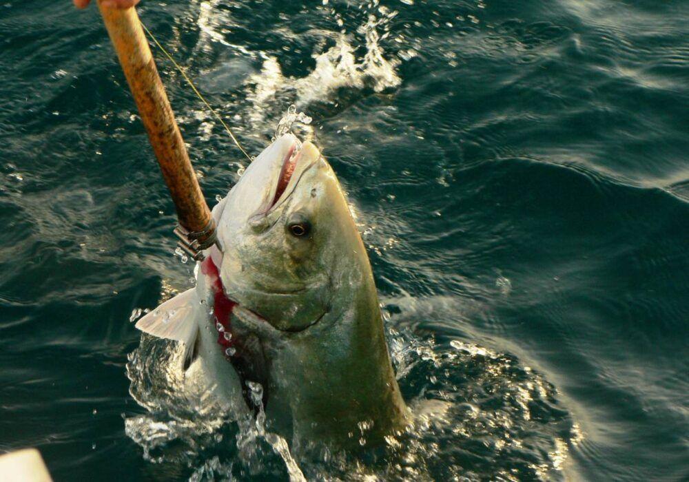 Pesca deportiva en Turquía